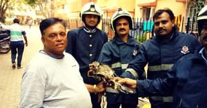 Cabbie by Day, Animal Rescuer Always: 51-YO Mumbaikar's Taxi Is Like No Other!