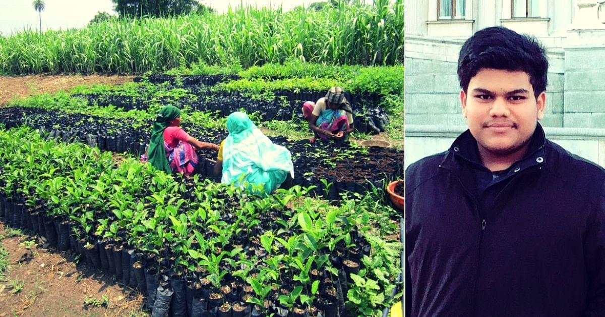 Delhi Teen Helps Grow 6000+ Trees, Raise Farmer Incomes in Vidarbha by 25%!