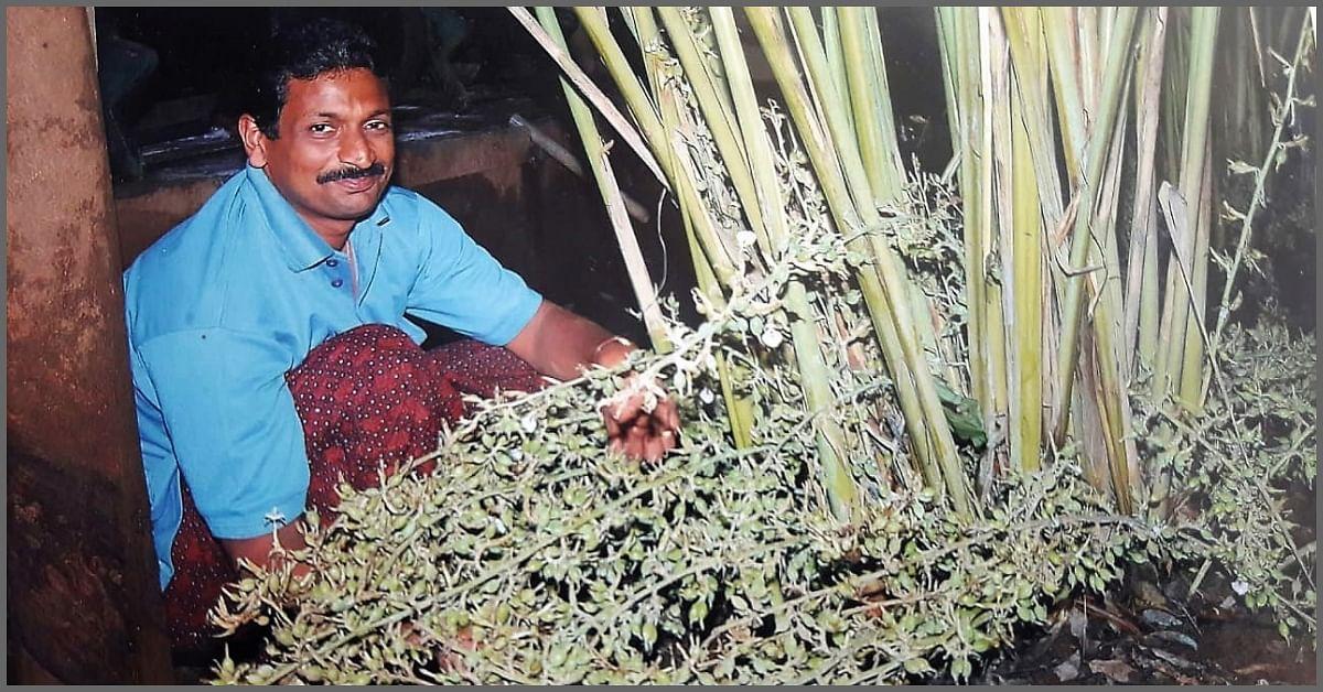3-Feet-Long Carrots to Cauliflowers that Weigh 25 kg! Meet 4 Innovative Farmers