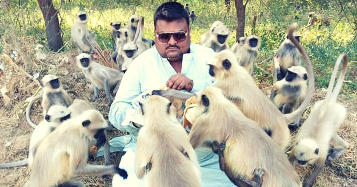 Meet Ahmedabad's Monkey Man who Has Been Feeding 500+ Langurs For the Last 10 years!