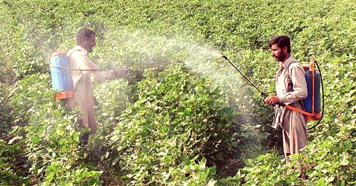 Farmers First: How Maharashtra Cut Pesticide Poisoning Deaths From 62 to 2 In Just a Year!