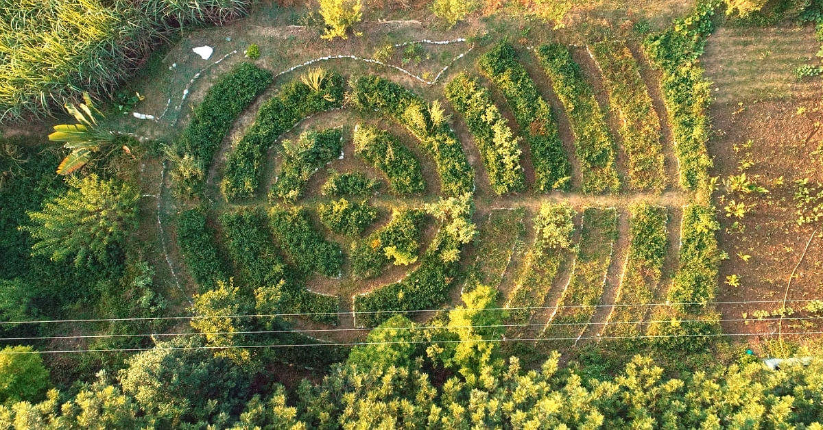A Farm That Will Live Forever: Meet the Couple Teaching This Special Technique!