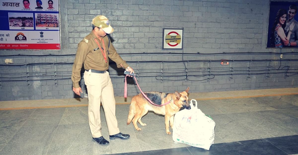 Ready for Robotic Canines? Sniffer Dogs at Airports May Soon Be a Thing of The Past!