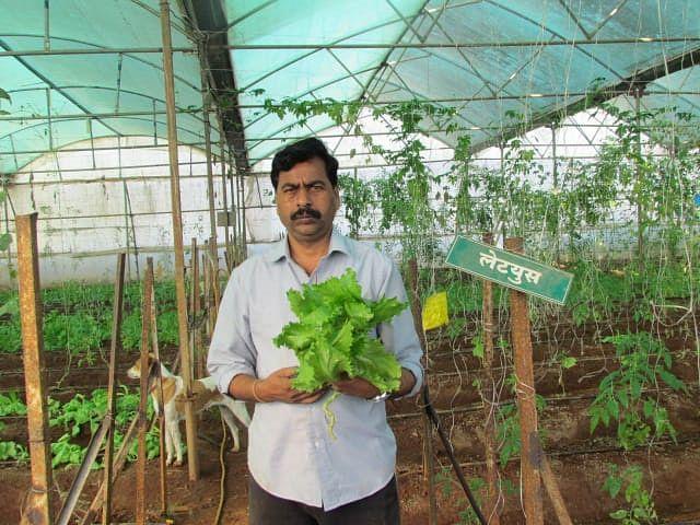 Maha Farmer Pays off 10L Loan, Helps Create 400 Cr Turnover
