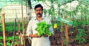 Maharashtra Farmer's Vision Helps Farmer Group Reach a Turnover of Rs 400 Crore!