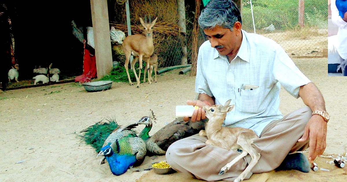 This Roadside Mechanic from Rajasthan Has Rescued Over 1180 Injured Wild Animals!