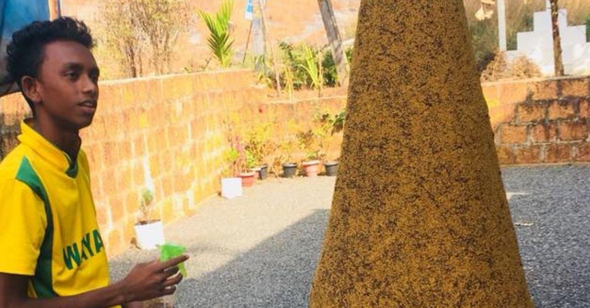 Using Bamboo, Millets & Dirt, Kerala Student Grows an 'Evergreen' Christmas Tree!