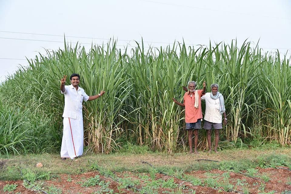 Karnataka Mba Turned Organic Farmer Earns Rs 7 10 Lakh Yearly