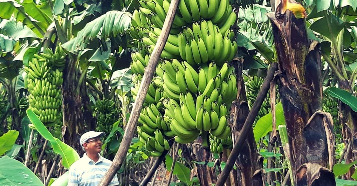 Banana-farmer-UP-padma shri farmer