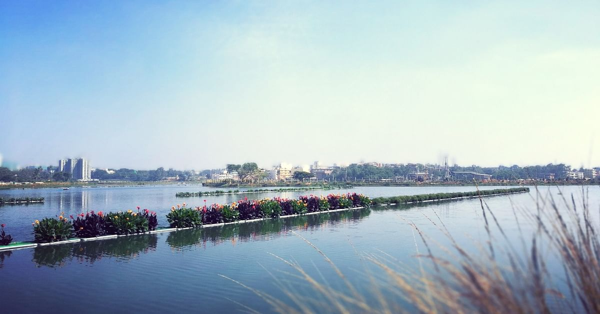 How a Garbage-Laden B'Luru Lake Set a World Record For India's Largest Floating Island!