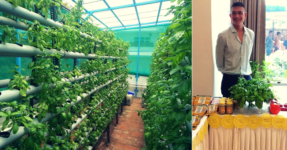 Hydroponics Chennai Man Grows 6 000 Plants In 80 Sq Ft Space