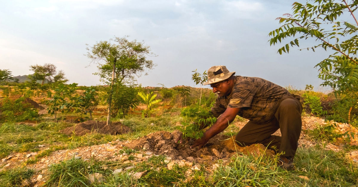 Karnataka Photographer Works For 3 Years, Transforms Barren Acre to Thriving Forest