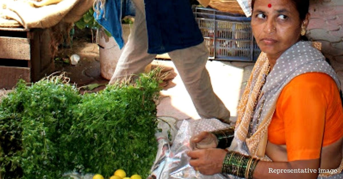 Humble Coriander Earns Pune Farmers Lakhs in Profits in a Few Weeks. Here's How!