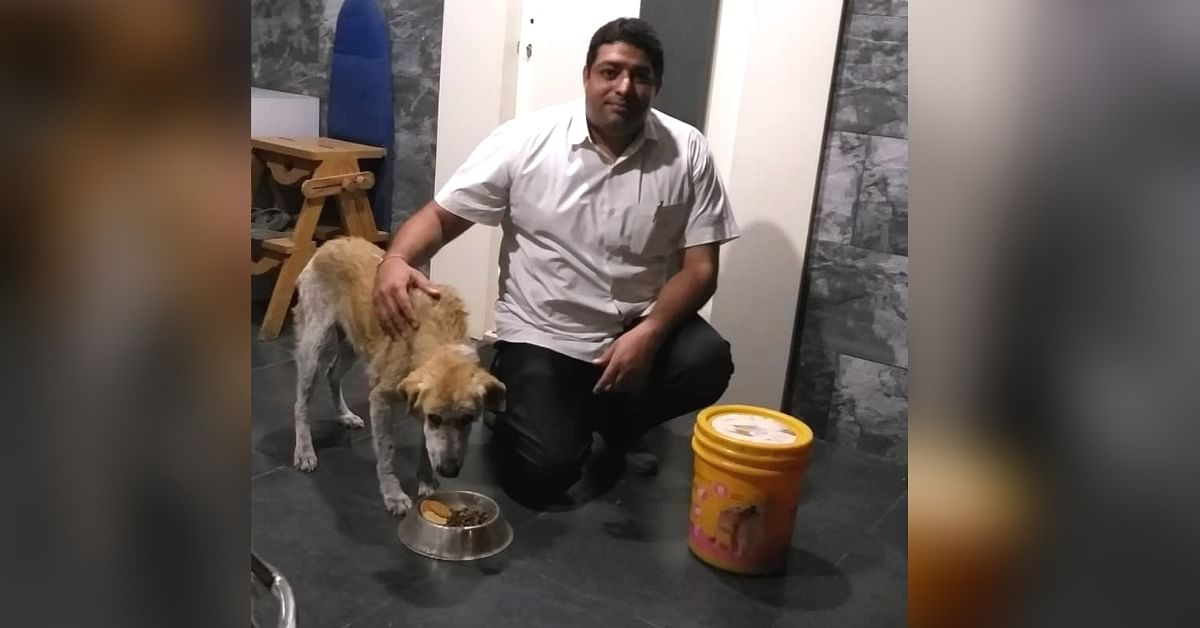 Pawing It Forward: Pune Doctor's Life Saved by Stray Dog He Saved 16 Years Ago!