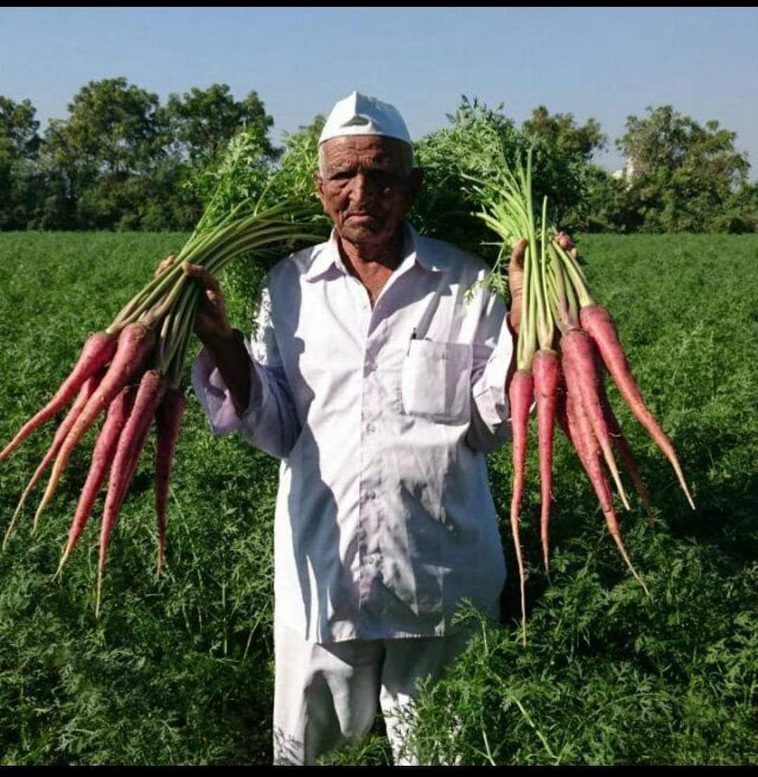carrot farmer Vallabhbhai Vasrambhai Marvaniya padma shri