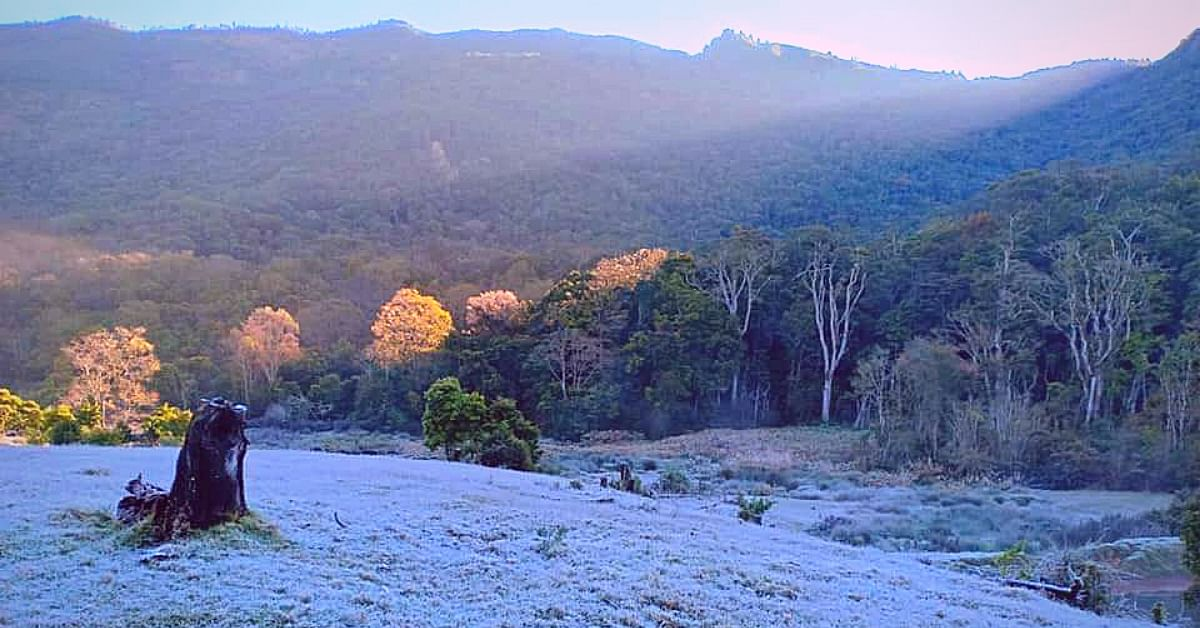 Frost Turns Kerala's Munnar Into Winter Wonderland. Check Out 10 Gorgeous Pics!