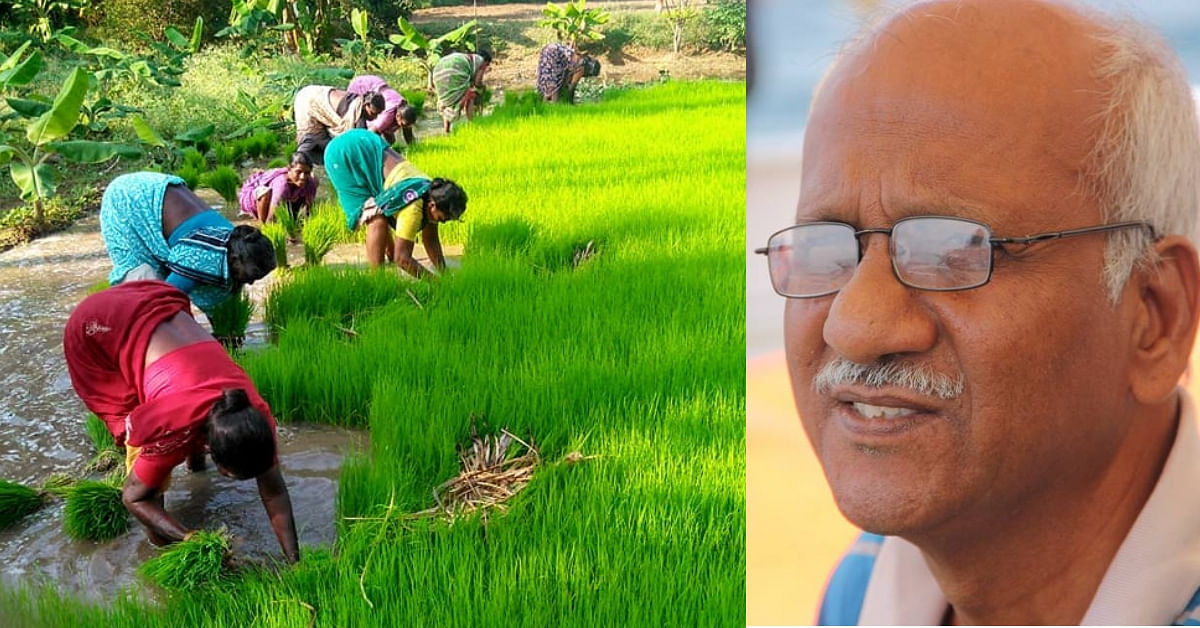 Exclusive: Retired TN Banker Sells Home to Turn Barren Land into Model Organic Farm!