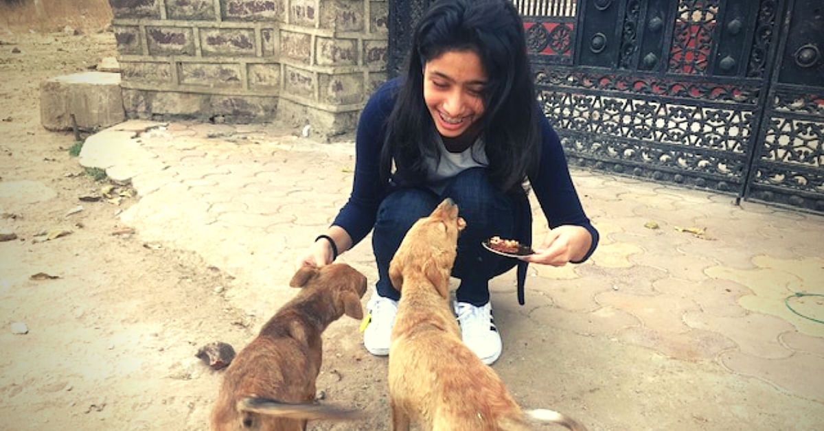 14-YO Girl Turns Saviour For Strays, Builds Shelter For 40+ Dogs In Just 3 Months