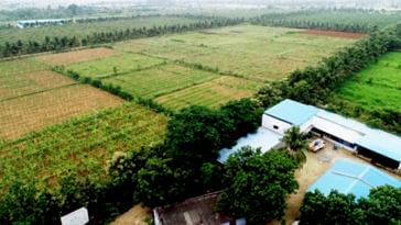 73-YO Man Turns 200 Acre Land Into Organic Farm, Saves 2 Cr Litres of Water_Year! (3)