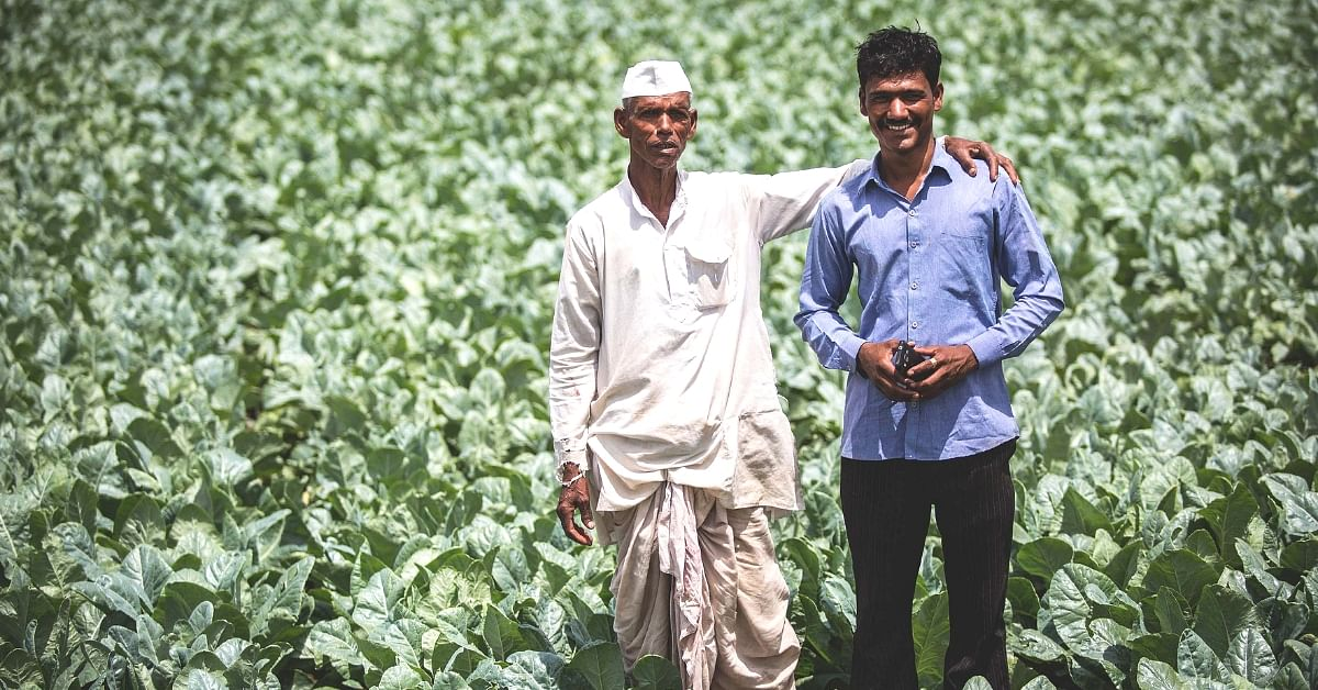 AI to the Rescue: How Phones are Turning into Plant Doctors for Thousands of Farmers