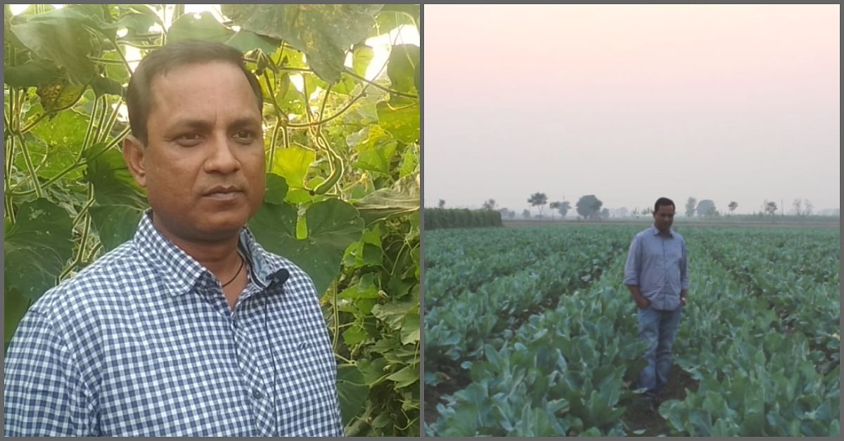 Science & Tech: How This Farm Earns Crores From Cauliflowers