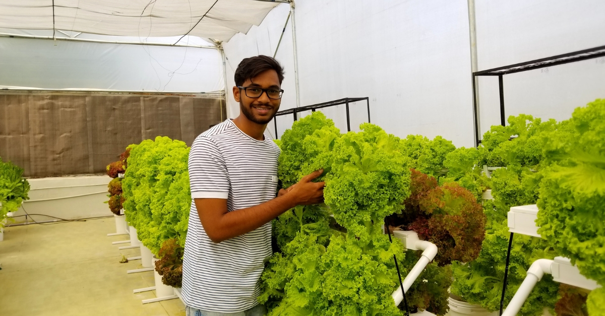 No Time, Space to Farm At Home? Hyderabad Hydroponics Firm Has a Doorstep Solution!