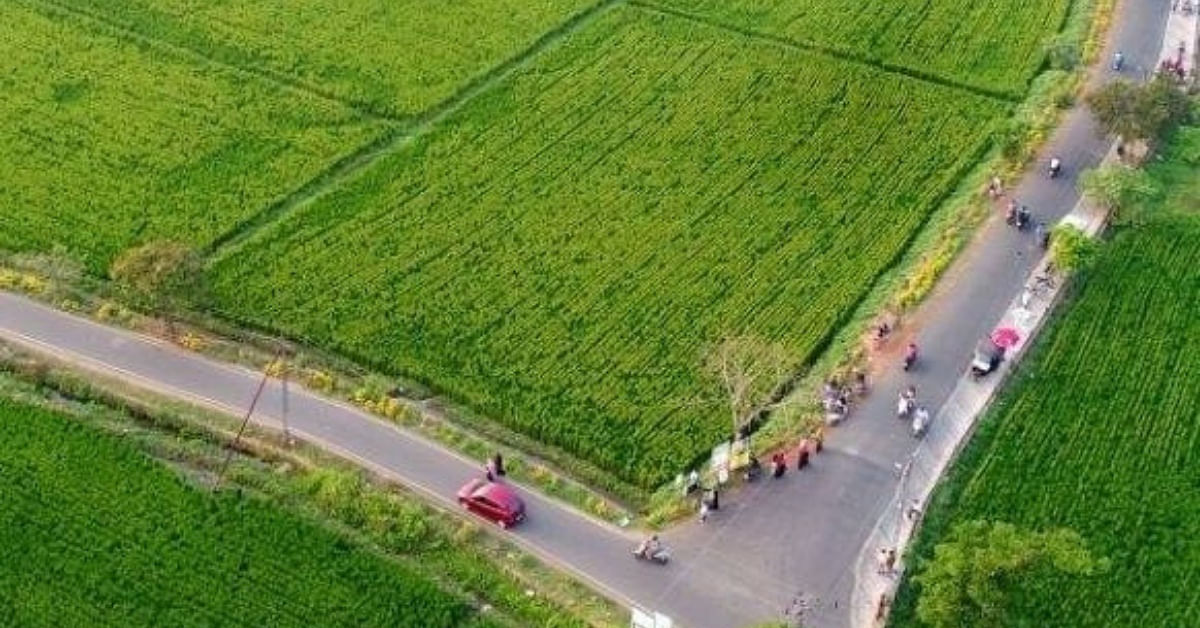 Kerala Youth Turn Dumpyard Clogged With Trash For 20 Years Into Lush Fields!