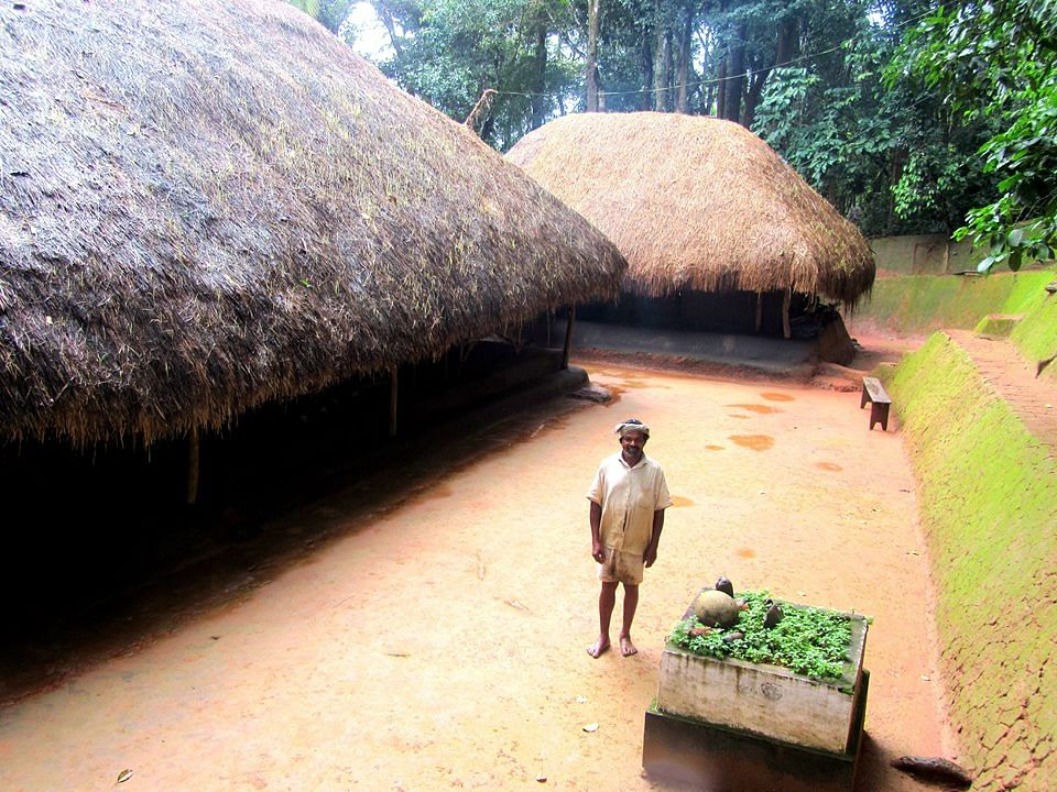 Kerala's 'Guardian of Native Paddy' Lives in a 150-YO Home