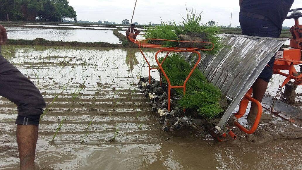 Machine Paddy Transplantation (MPT) in Basahi, Buxar. (Source: DeHaat)