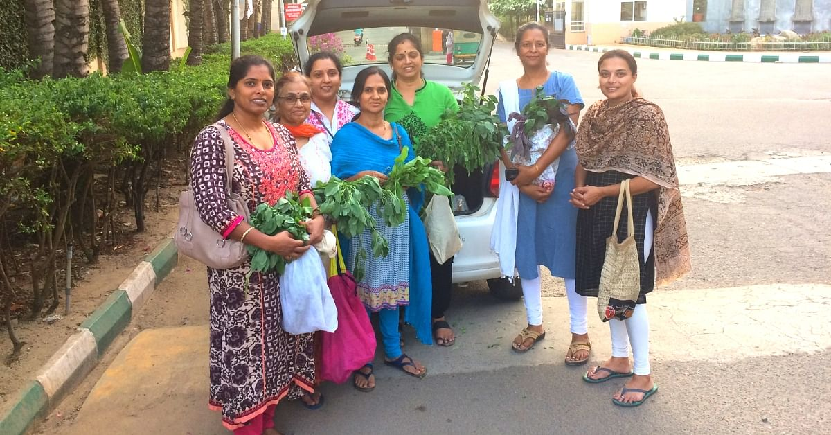 Engineer Turns Organic Farmer, Supplies Fresh Greens to Houses an Hour After Harvest