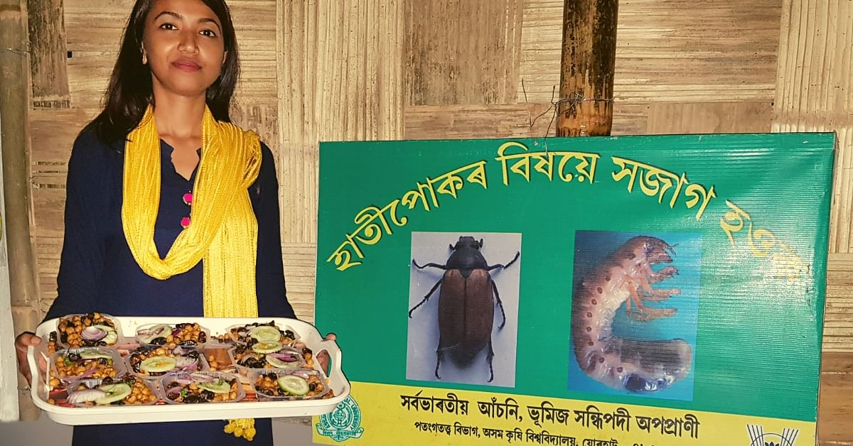 Beetle Fry, Anyone? Assam Island Turns Farm Insect Into Culinary Delicacy!