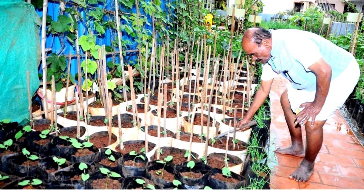 Mysuru Man With Lung Ailment Grows 20+ Veggies in Award-Winning Garden!