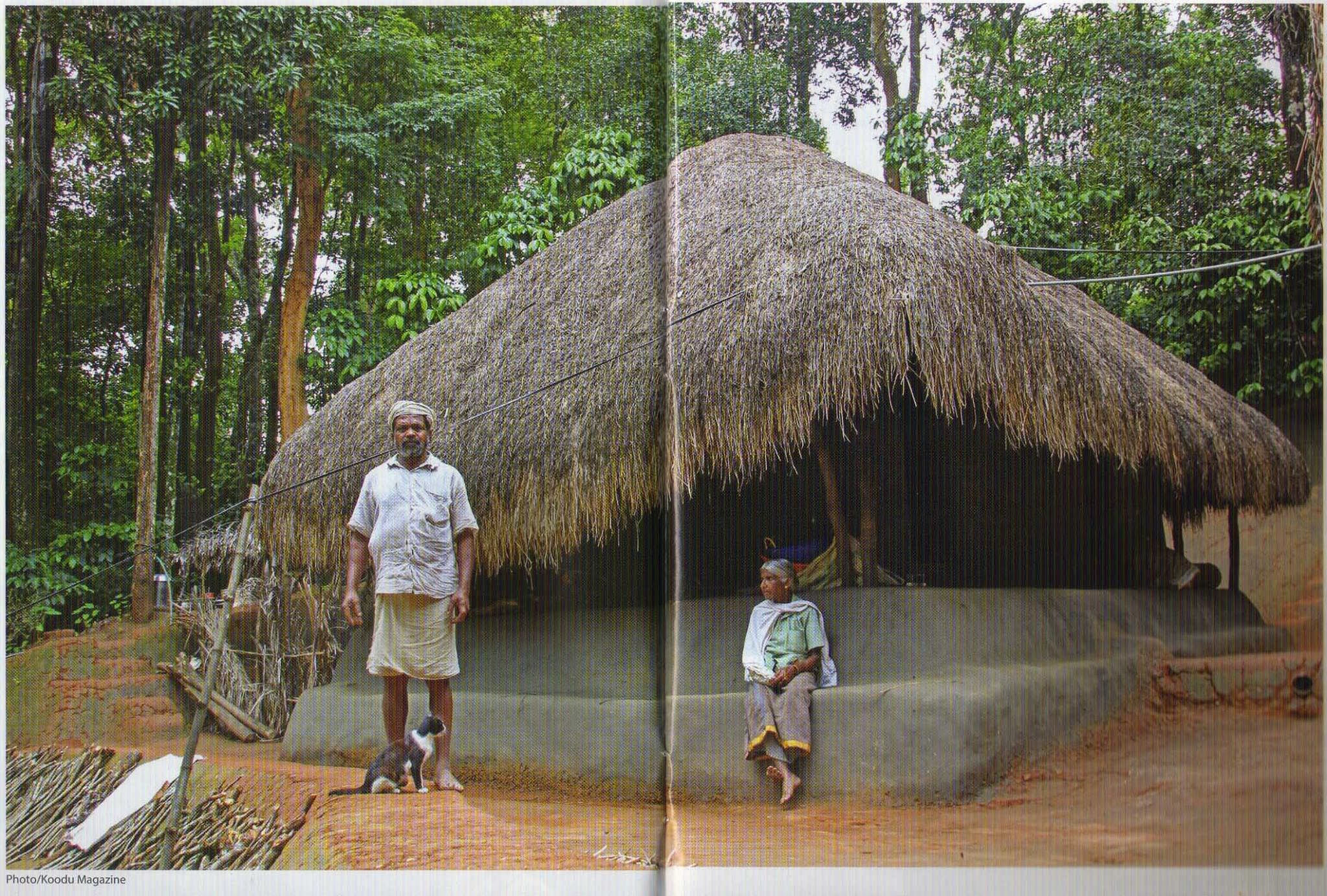 Kerala's 'Guardian of Native Paddy' Lives in a 150-YO Home Made of
