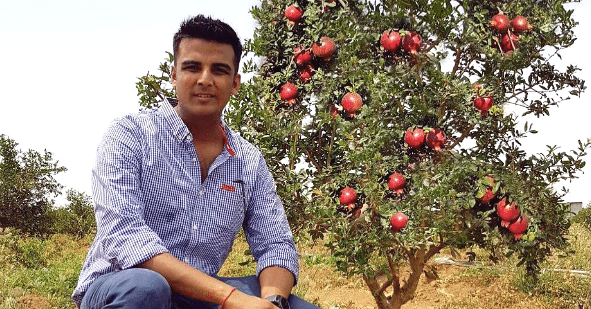 Ex-Investment Banker Starts Farm to Grow Residue-Free Fruits, Now Earns Lakhs From Exports!