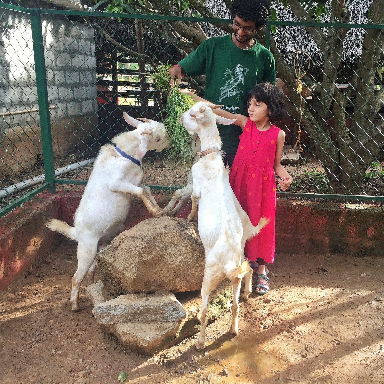 B'luru Man Rescues Animals, Builds Habitat Classrooms For Kids!