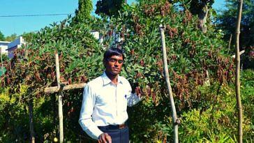 organic-farmer-earns-lakhs-madhya-pradesh-bundelkhand