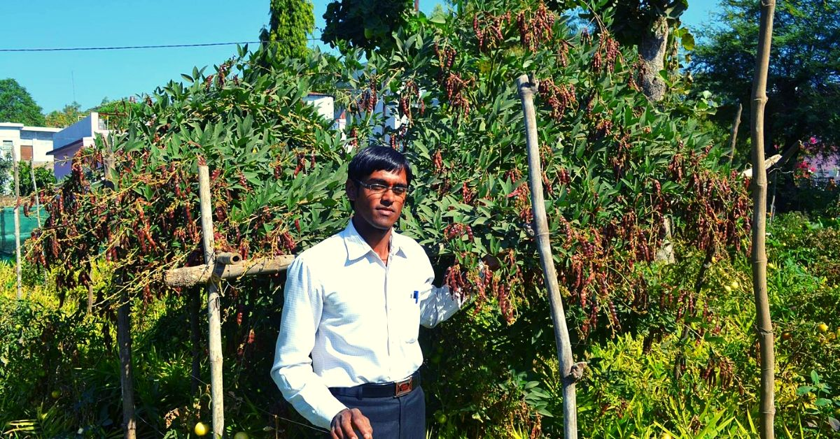 MP Farmer Grows Chemical-Free Food in 5 Layers, Earns Millions From Just 2.5 Acres!