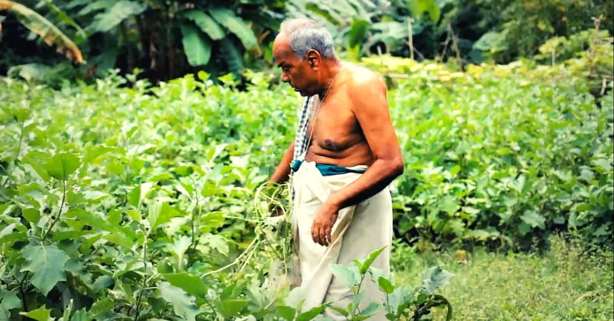 Pesticide Poisoning Inspires Odisha Teacher To Go Organic, Save 700 Rice Varieties