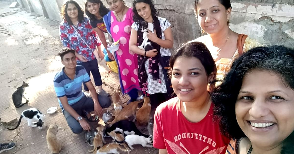 Thane Folks Upcycle Old Jeans Into Beds For Street Cats, Turn Dumpyard Into Safe Haven!