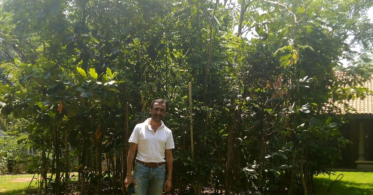 This 58-YO Bengaluru Man Wanted to Live in a Forest. So He Grew One in His Backyard!