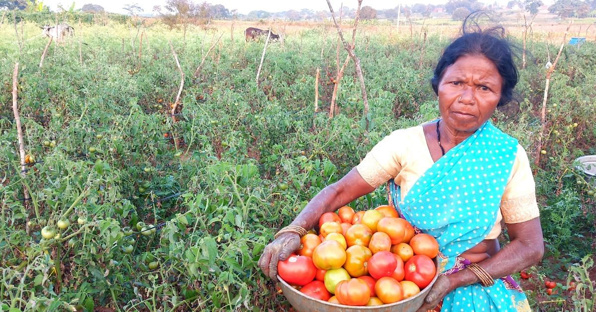 Karnataka Tribal Woman Turns Into Organic 'Super Farmer', Now Earns In Lakhs!