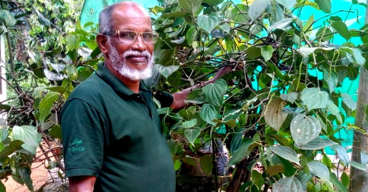 Award-Winning Kerala Farmer's Food Forest Helps Him Reap Gold From Black Pepper!