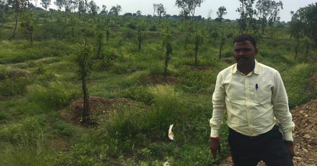Forest Officer Defies Dry Spells, Grows 1.5 Lakh Trees In Drought-Hit K'taka District!