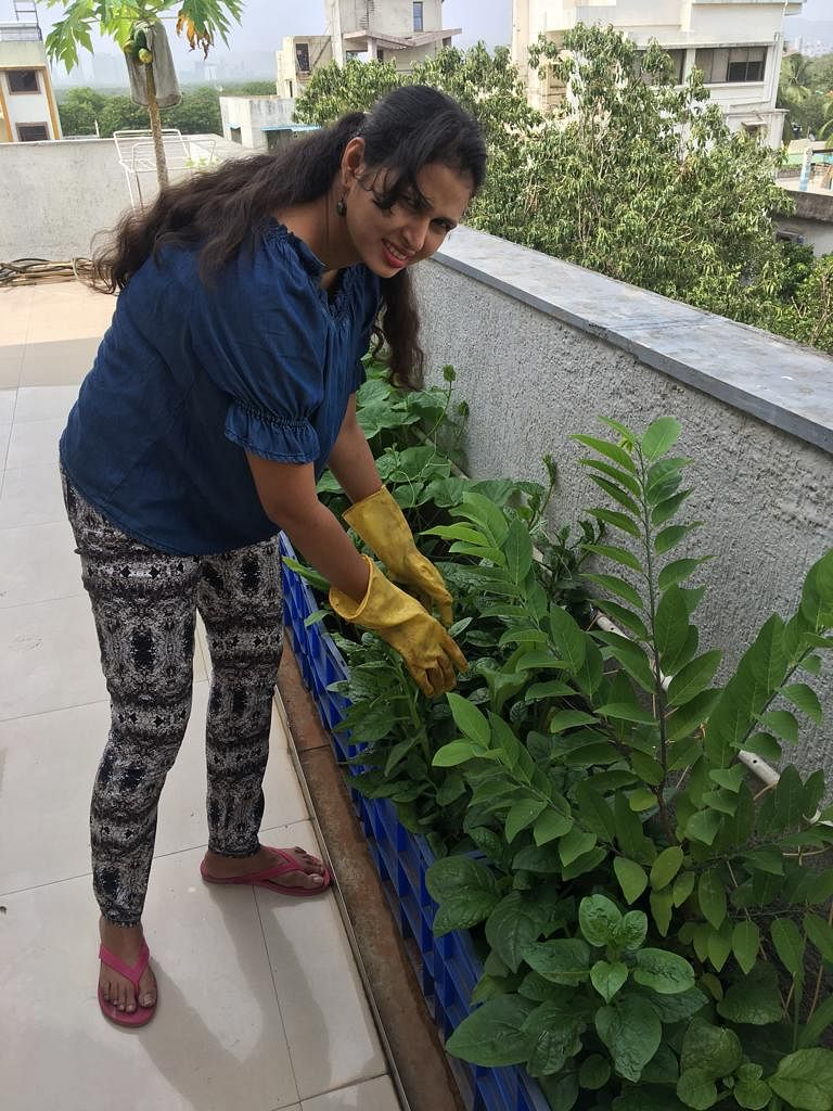 Dr Reema Lewis tending to her plants. (Source: Dr Reema Lewis)