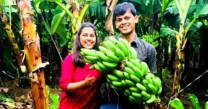 Earth Walls to Organic Food_ Gujarat Couple Quits US Job to Create Food Forest!