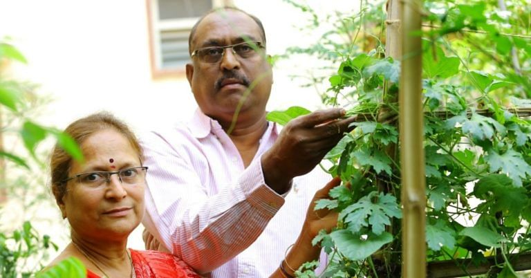 500 Pots, 40 Varieties, 0 Chemicals: Hyderabad Couple Turn Terrace into Lush Organic Farm!