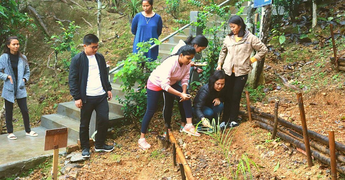 'My School, My Farm': Mizoram IAS Officer Tackles Malnutrition With a Brilliant Idea!