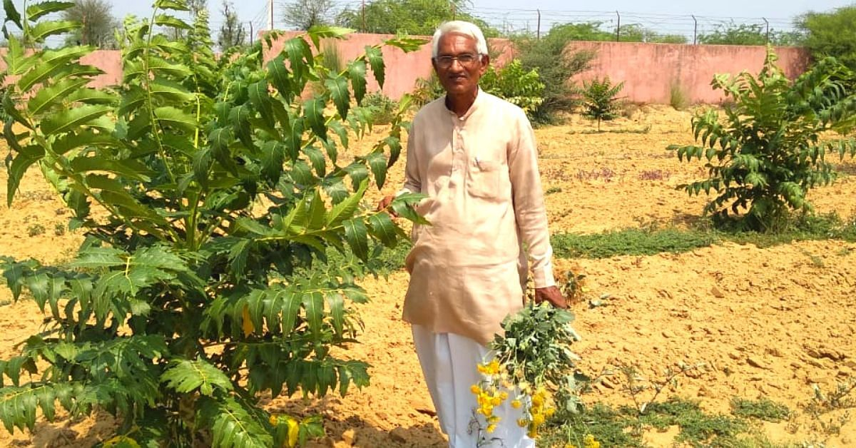 Can a Tree Grow with Just 1 Litre of Water? 68-YO Has Grown