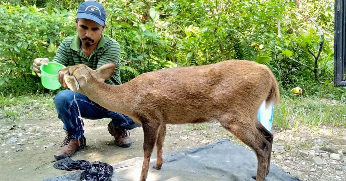 Working Tirelessly for 12 Years, Assam Man Has Rescued 5000+ Kaziranga Animals!