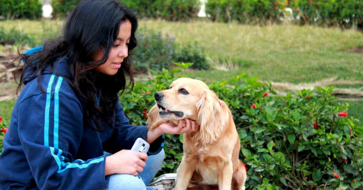 5 Ways to Give You Doggo a Paw-Fectly Healthy, Happy Life!